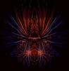 firequacker (gotmyxomatosis69) Tags: fireworks fireworksshow firework color colorart fireworkart photoshop canon canon5dmarkiii abstract abstractphotography blackbackground