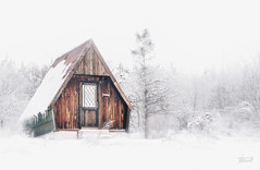 lonley (kosticbratislav) Tags: winter house small fog foggy forrest tree snow white serbia srbija nikon nikond7200 d7200 nikon70300 day