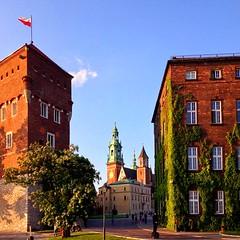 wawel royal castle (sculptorli) Tags: kraków krakow polska poland castle châteaux zamekkrólewskinawawelu wawel