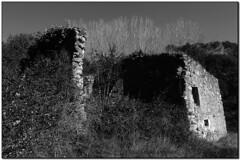 El Cogul, La Garriga (el Vallès Oriental) (Jesús Cano Sánchez) Tags: elsenyordelsbertins xiaomi redmi note4 catalunya cataluña catalonia barcelonaprovincia valles vallesoriental cinglesdeberti lagarriga excursionisme excursionismo hiking masia catalanfarmhouse ruines ruinas ruins bn byn bw