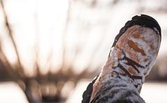 IMG_3459 (La caverne aux trésors) Tags: winter landscape macro beauty paysage hiver natural naturel dof weather onceuponatime neige snow nature flower beach park parc sunset sun city lake frozenlake lac new orange 2018 montreal montréal angrignon canada art plage canon spring bw bnw black white blackandwhite ville urbain urbex urban geotagged river live light street tree trees arbres water trip