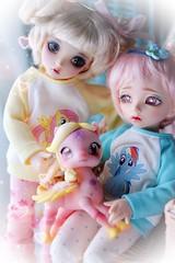 Little girls love... (assamcat) Tags: fairyland macro canon pink kawaii littlefee aimerai bjd balljointeddolls abjd