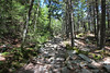 Mt Kearsarge State Forest Park, NH (russ david) Tags: mt kearsarge state forest park nh june 2017 new hampshire hike