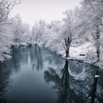 Winterwonderland thumbnail