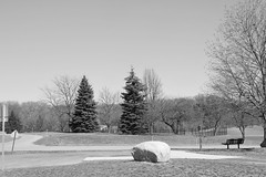 Cascade Twp. Park (neukomment) Tags: michigan usa march 2018 spring canonrebelt5i sigmalens park outside outdoors blackandwhite bw monochrome