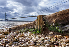 Humber Groin (Almac1879) Tags: wood shoreline neglect landscape bridge wooden humberbridge humber landscapes shore groin hessle sky river pebblebeach bridges weathered pebbles groins decay worn beach water