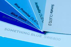 The Blues (Eric Tischler) Tags: macromondays theblues