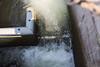 restricted jumping zone (n.a.) Tags: salmon fish ladder ballard locks seattle wa us water