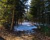 Winter im Waldpark (Tobias Keller) Tags: 54 bavaria bayern deutschland donauries germany heimat huisheim landschaft schnee schwaben swabia waldpark weitwinkel weitwinkelkonverter winter home landscape geo:lon=107097006 geo:lat=488279154 camera:make=panasonic exif:isospeed=160 geostate geocountry geocity exif:focallength=14mm camera:model=dmcg5 geolocation exif:lens=lumixg14f25 exif:aperture=ƒ80 exif:model=dmcg5 exif:make=panasonic lumixg14f25 panasonicdmcg5