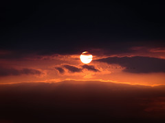 Wedge of cranes | Kurkiaura (Olli Tasso) Tags: wedgeofcranes kurkiaura cranes crane kurki sunset auringonlasku cloudy pilvinen pilvi pilvenrako light valo upea kaunis beautiful serene outdoors nature luonto taivas sky reippi pirkkala suomi finland orange sun aurinko oranssi scenery landscape maisema