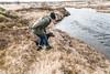 Labrador Retriever Kilja, swimming again (olikristinn) Tags: 19042018 2018 april april2018 heiðmörk hraunhóll hólmsá hólmurinn iceland kilja labrador labradorretreiver reykjavik reykjavík reykjavíkdog suðurá chocolatelab chocolatelabrador hundur hvolpur puppy