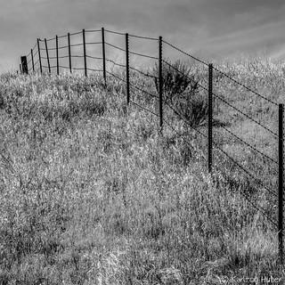 Barb Wire Fence_B&W_8564