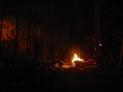 DSCN4208 (David J. Thomas) Tags: mirrorlake blanchardspringsrecreationarea fiftysix mountainview arkansas forestfire proscribedburn flames