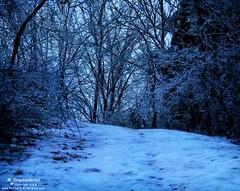 Blue Hour capture of a Maryland Ice Storm (PhotosToArtByMike) Tags: icestorm freezingrain hagerstownmaryland hagerstown maryland md ice precipitation snow appalachianmountains washingtoncounty westernmaryland