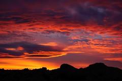 Joshua Tree National Park, California (Anne McKinnell) Tags: joshuatree joshuatreenationalpark nationalpark silhouette sunset california landscape nature