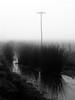 (Walter Daniel Fuhrmann) Tags: campo rural niebla fog bw blancoynegro bn agua water reflejo reflection