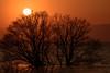琵琶湖・湖北31・Lake Biwa (anglo10) Tags: 長浜市 滋賀県 japan lake 湖 琵琶湖 夕景 sunset