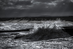 Wild Weather (10 of 1) (L.P.M PHOTOGRAPHY) Tags: scotland landscape beach stormy storm surge north lossie lossiemouth harbor harbour blackwhite canon 7dmkii travel adventure moray speyside seascape wall pier dunes sand clouds birds coast