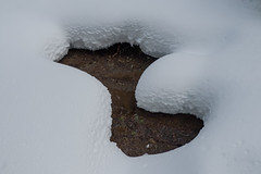 Endless winter in California (atgc_01) Tags: lumix lx5