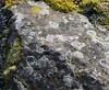 (:Linda:) Tags: germany thuringia village bürden stone lichen naturalstone