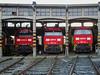 RAILION MAK2000 - ASTI TIBER.CO (Giovanni Grasso 71) Tags: mak2000 g2000 asti tiberco giovanni grasso railion db cargo italia