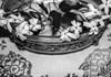 IMG_3605 (ana jannelli) Tags: areco sanantoniodeareco provinciadebuenosaires argentina