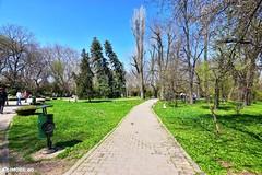 Parcul Cismigiu, Bucuresti (IMOBE.ro) Tags: bucuresti cismigiu parc tokina 1120 d5600 imobe bucharest real estate