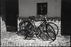 Generation (gsantar) Tags: goran šantar generation film photography mamiya press super 23 6x9 sekor 100mm f35 dev 700 ro9 foma 100 zmajevac josić josic vinarija old bikes art