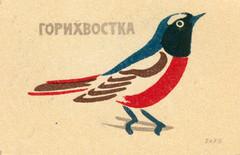 russian matchbox label (maraid) Tags: russian matchbox label russia ussr packaging bird nature wildlife 1963 1960s
