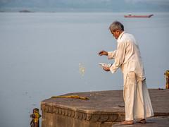 LR Madhya Pradesh 2018-2240180 (hunbille) Tags: birgittemadhyapradesh20181lr ghat ahilyabai ghats ahilyabaighat india madhya pradesh madhyapradesh maheshwar narmada river holy ahilya