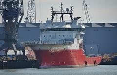 Alucia 2 (Hugo Sluimer) Tags: portofrotterdam port haven onzehaven nlrtm zuidholland nederland holland