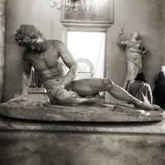 Galata morente (Ramona Anitsuga) Tags: museicapitolini rome roma europa europe escultura sculpture art arte nocolor museo museum