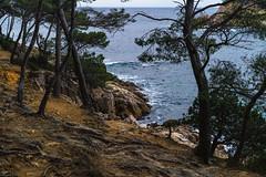 Calanque du Port d'Alon (x1klima) Tags: leportdalon provencealpescôtedazur frankreich landscape nature landschaft natur himmel sky clouds wolken beach strand seaside meer sea
