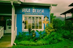 Hawaii USA - Kauai Island. Hanalei Beach (Feridun F. Alkaya) Tags: wailuafalls kauaisspirit forest waimeacanyonstatepark waimea waimeacanyon hawaiiisland ngc landscape canyon road kauaı grass soil aloha hanaleibeach hanalei usa worldheritagelist unescoheritagelist unesco unc kohala mauna hualalai kilauea volcanos garden sky flower hawaii