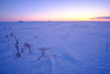 The last sunset (Kristaaaaa) Tags: arctic tuktoyaktuk fuji winter blue hour sunset velviavivid