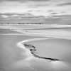 Koserow (Ondrej V.) Tags: beach ocean sand sea baltic water pier sky longexposure outdoor monochrome blackandwhite koserow usedom germany landscape seagull
