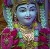 Radhaji Shringar Darshan on Wed 28 Mar 2018 (Dharma Bhakti Manor Daily Darshan) Tags: nar naryan narnarayan radha krishna radhakrishna harikrishna hari krushna ghanshyam maharaj shringar shayan darshan