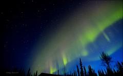Undulating Chiffon (Katy on the Tundra) Tags: northernlights auroraborealis nightsky