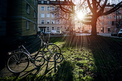 Big and little (Melissa Maples) Tags: münchen munich deutschland germany europe nikon d3300 ニコン 尼康 sigma hsm 1020mm f456 1020mmf456 winter sunflare lensflare flare bikes bicycles sunny sun
