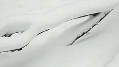 Late Winter Catapult (offroadsound) Tags: catapult winter invierno hiver tuningfork snow nieve schnee neige neve