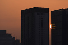 Rising behind the buildings (Picocoon图茧) Tags: sun morning sunrise city building behind