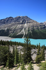 EOS04493. One of Two pictures. Left side of Peyto Lake, Banff National Park. Natural Colors. BEST VIEWED LARGE (E.W. Smit Wildlife.) Tags: peyto peytolakebanffnationalpark peytolake 1dmarkiii canon1dmarkiii canoneos1dmarkiii wildrosecountry rockymountains rockies rocks tourist tourists travelalberta outdoor outdoors mountains park parks parkscanada alberta albertacanada albertarockies lake canada canon canadianrockies canadianrockymountains banffnationalpark banff banffcanada banffalbertacanada nature nationalpark naturalcolors ef1740mmf4lusm canonef1740mmf4lusm