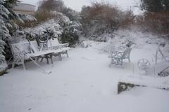 DSC_8006 (seustace2003) Tags: baile átha cliath ireland irlanda ierland irlande dublino dublin éire glencullen gleann cuilinn st patricks day zima winter sneachta sneg snijeg neve neige inverno hiver geimhreadh