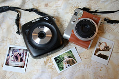 Photo of the day: 25.3.2018 (House Of Secrets Incorporated) Tags: photooftheday photooftheday2018 aphotoaday2018 dailyphoto dailyphoto2018 dailyphotography dailyphotography2018 dailyphotograph instax instantphotography instaxmini90neoclassic instax90 instaxsquare fujifilm instaxsquaresq10 instaxsq10