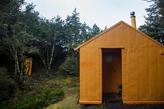 Ballard Hut (Aaron K Hall) Tags: kawekaforestpark hawkesbay newzealand nz