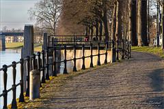 Pad langs de IJssel (Hans van Bockel) Tags: 70300mm d7200 ijssel nikon rivier stad tamron wandeling welle deventer overijssel nederland nl onder de linden avondzon wandelroute pad bomen spoorbrug hek