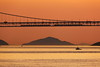 Two trains run on the long suspension bridge (Teruhide Tomori) Tags: 南備讃瀬戸大橋 北備讃瀬戸大橋 瀬戸大橋 香川県 坂出市 瀬戸内海 四国 夕方 日没 日本 kagawa sakaide bridge sunset evening sea japan japon shikoku greatsetobridge setoinlandsea train railway railroad 瀬戸大橋線 landscape suspensionbridge 吊り橋