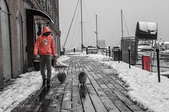 Snow on the Dock (FleetingEye) Tags: dogs usa winter fellspoint people brick city cityscape baltimore dof snow streetscape man dock outside selectivecolor boats scenic dog 2018 animals street maryland ice frozen