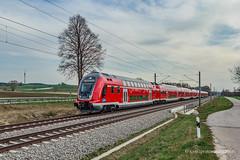 Twindexx Vario unweit von Pfaffenhofen (Ilm) (ice91prinzeugen) Tags: rb regionalbahn db regio oberbayern hallertau bahnland bayern twindexx vario br 445