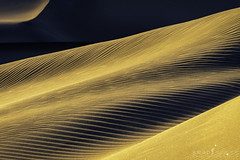 Golden Waves (ihikesandiego) Tags: mesquite sand dunes national park sunset